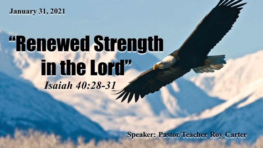 Renewed Strength in the Lord
